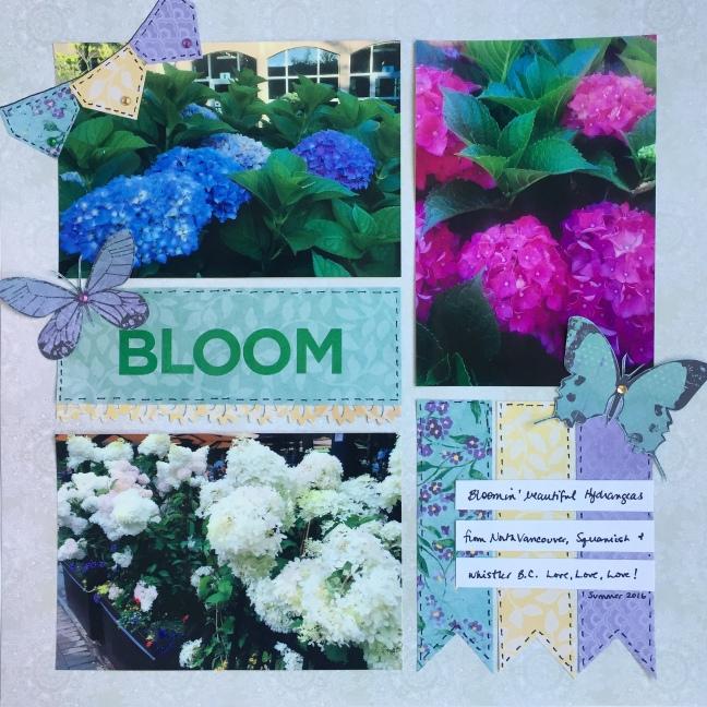 bloom 6