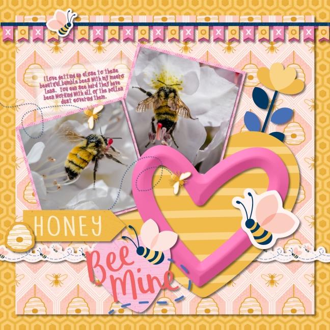 Bee Mine 1.jpg