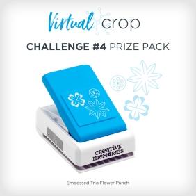 VirtualCrop_Prize4