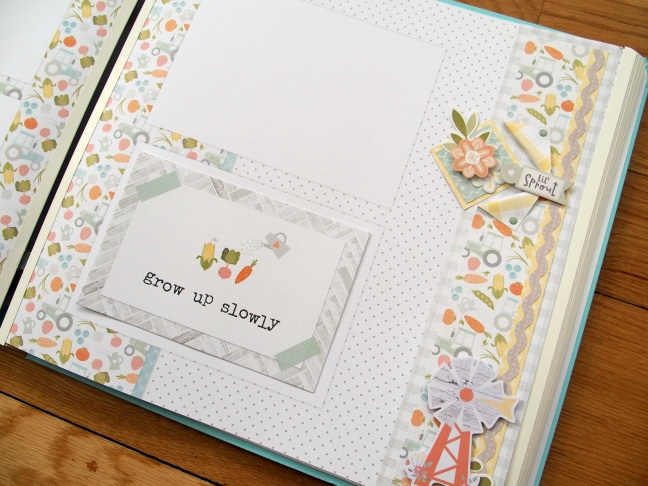 Little-Lamb-Collection-Baby-Borders-Creative-Memories-12