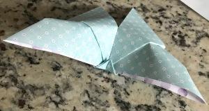 Secret-Garden-DIY-Paper-Craft-Butterfly-Creative-Memories24