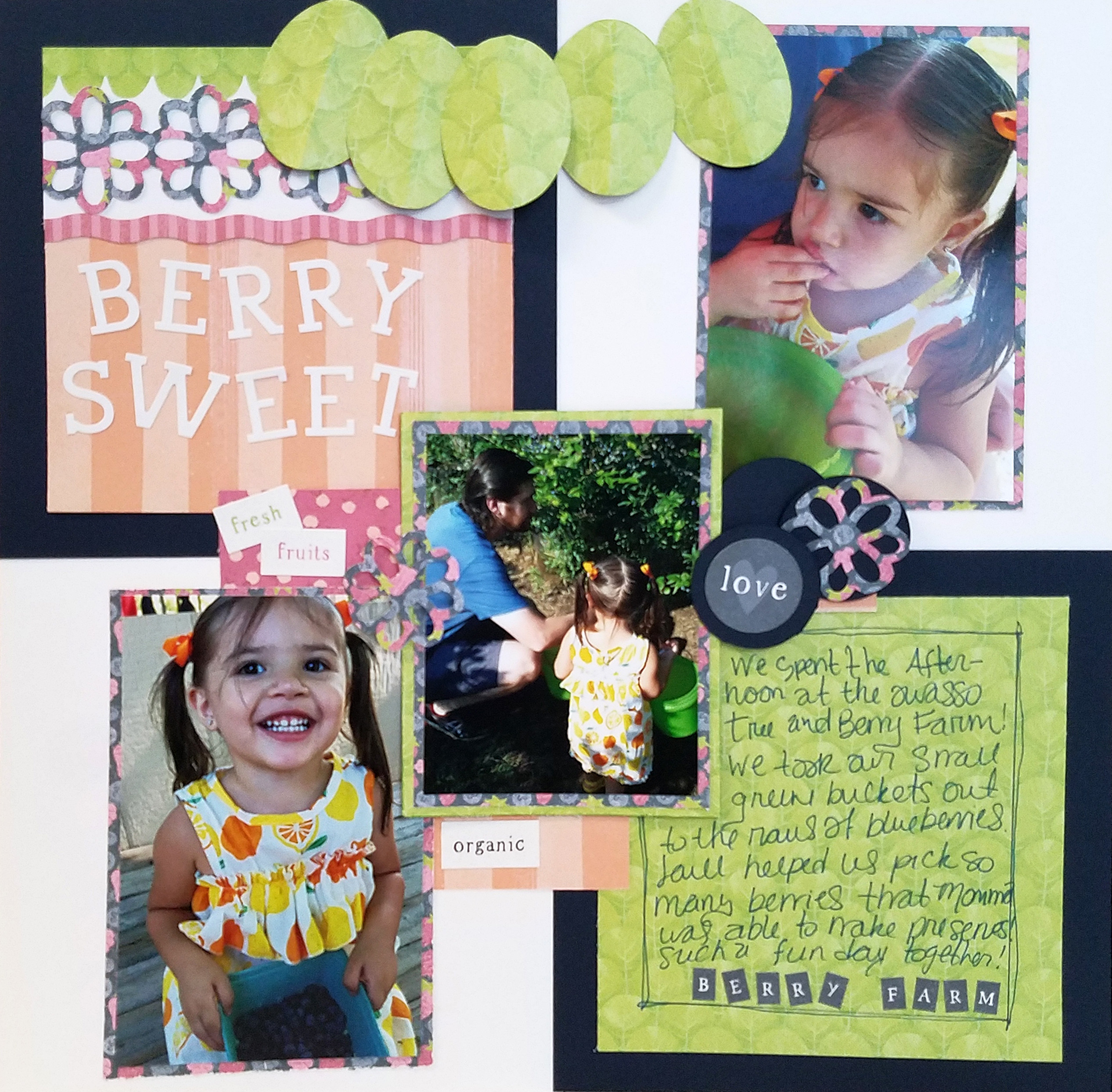 Locally-Grown-Scrapbook-Project-Creative-Memories14
