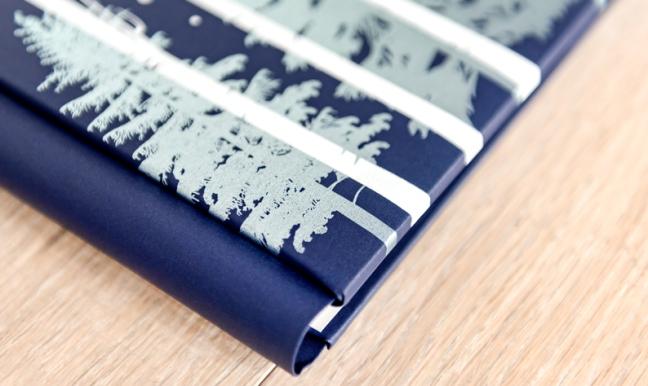 Frost-Winter-Scrapbook-Album-Cover-Creative-Memories