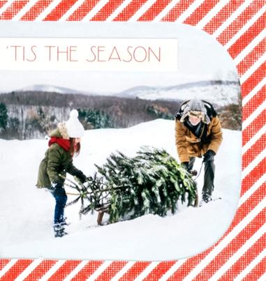 Seasons-Greetings-Christmas-Scrapbook-Layout-Process2