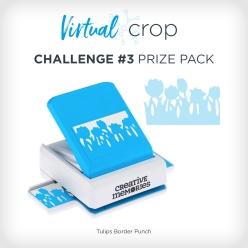 VirtualCrop_0219_Prize3