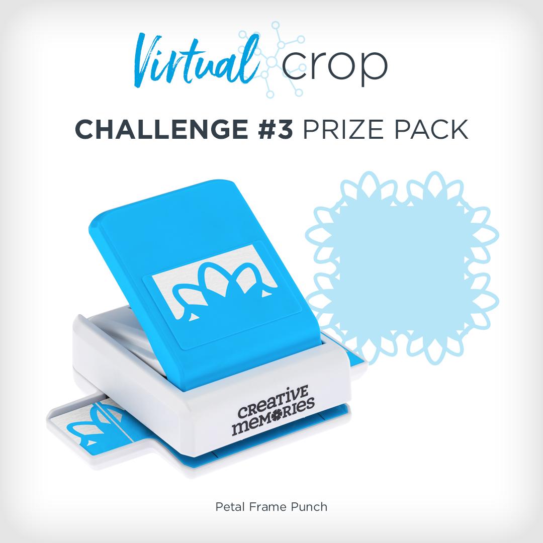 VirtualCrop_1019_Prize3